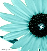 Michelle Frizzell-Thompson - Aquamarine sunflower...
