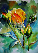 Rose Paintings - Aquarelle by Elise Palmigiani