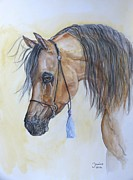 Horse Original Paintings - Arabian head by Janina  Suuronen