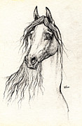 Horse Drawing Prints - Arabian Horse Drawing 08 10 2013 Print by Angel  Tarantella
