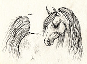 Horse Drawing Prints - Arabian Horse Drawing 14 08 2013 Print by Angel  Tarantella