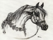 Horse Drawings - Arabian Horse Drawing 22 by Angel  Tarantella