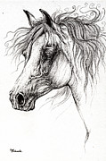 Horse Drawings - Arabian Horse Drawing 54 by Angel  Tarantella