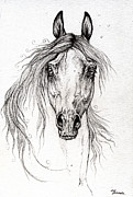 Horse Drawings - Arabian Horse Drawing 55 by Angel  Tarantella