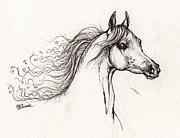 Horse Drawings - Arabian Horse Drawing A  01 08 2013 by Angel  Tarantella