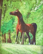 Postcard Pastels - Arabian horse in a forest clearing by Dorota Zdunska