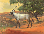 Arabia Painting Framed Prints - Arabian Oryx Framed Print by ACE Coinage painting by Michael Rothman