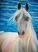 Whiskers Pastels Metal Prints - Arabian Seaside Metal Print by Maricay Smeenk
