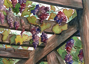 Trellis Paintings - Arbor by Marsha Elliott