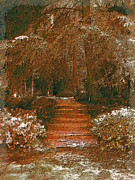 Arbor Steps Print by Tim Allen