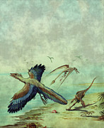 Dinosaurs Posters - Archaopteryx and Compsognathus Poster by World Art Prints And Designs