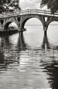 White Arched Bridge Prints - Arched Bridge II Print by Steven Ainsworth