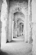 Ancient Rome Art - Arched Walkway At Entrance Of The Old Roman Colloseum At El Jem Tunisia by Joe Fox