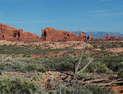 Panorama Digital Art Originals - Arches North Window Rock by Daniel Hebard
