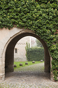 Tendrils Photo Posters - Archway Bebenhausen Abbey Poster by Matthias Hauser