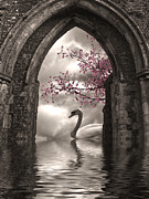 Swan Digital Art Posters - Archway to Heaven Poster by Sharon Lisa Clarke
