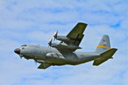 C130 Prints - Arctic Flight Print by Rick  Monyahan