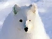 Fox Digital Art - Arctic Fox III Nature And Art by S Art