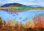Canadian Geese Paintings - Arctic National Wildlife Refuge by Pete Bryan