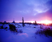 Alice Ramirez Art - Arctic Sunset in Churchill Canada by Alice Ramirez