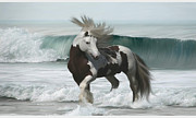 Gypsy Vanner Digital Art - Ard Ri by Lynn Jackson
