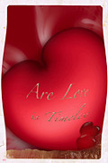 Timeless Design Mixed Media Prints - Are Love Is Timeless Print by Debra     Vatalaro