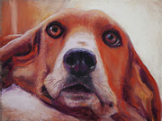 Dog Portraits Pastels Prints - Are You Talking To Me Print by Billie Colson