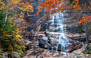 New Hampshire Fall Foliage Prints - Arethusa Print by Thomas Schoeller