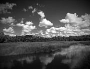 Pasco County Prints - Aripeka Number 5 Print by Phil Penne