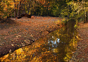 Oak Creek Metal Prints - Arizona Autumn Reflections Metal Print by Mike  Dawson