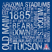Wildcats Photo Posters - Arizona College Colors Subway Art Poster by Replay Photos