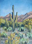 Melody Perez - Arizona colour