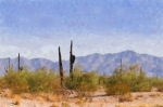 Old West Digital Art Posters - Arizona Sonoran Desert Poster by Betty LaRue
