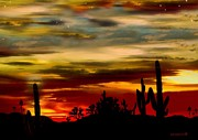 Best Sellers Digital Art Prints - Arizona Sunset Print by Dede Shamel Davalos