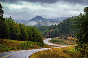 Arkansas Art - Arkansas Logging Road  by Richard Mason