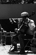 Avant Garde Jazz Photos - Arkestra Cellist UC Davis Quad by Lee  Santa