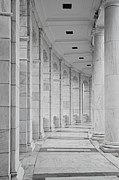 D.c. Framed Prints - Arlington Amphiteather Arches And Columns Framed Print by Susan Candelario