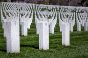 Tomb Photos - Arlington National Cemeterey by Susan Candelario