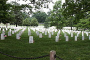Brave Photos - Arlington National Cemetery - 01133 by DC Photographer