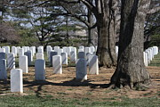 Virginia Cemetary Photo Posters - Arlington National Cemetery - 12123 Poster by DC Photographer