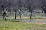Virginia Cemetary Photo Posters - Arlington National Cemetery - 12124 Poster by DC Photographer