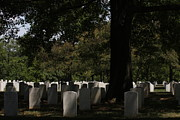 Arlington National Cemetery - 121243 Print by DC Photographer