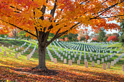 Hallowed Prints - Arlington National Cemetery in Autumn I Print by Clarence Holmes