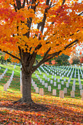Hallowed Prints - Arlington National Cemetery in Autumn II Print by Clarence Holmes