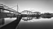 White Crane Prints - Armadillo Glasgow Scotland Print by John Farnan