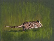 Endangered Pastels Prints - Armadillo Run Print by Anastasiya Malakhova