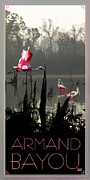 Bayou Digital Art - Armand Bayou Roseate Spoonbills by Jim Sanders