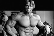 Movies Photo Metal Prints - Arnold Schwarzenegger Poster Metal Print by Sanely Great