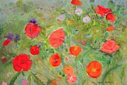 All Poppies Paintings - Arpeggiando by Ann Patrick