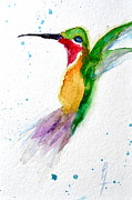 Nature Study Prints - Arriving Print by Beverley Harper Tinsley